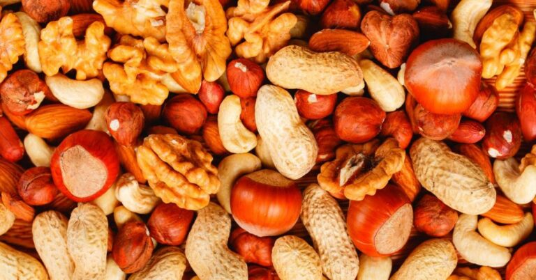 Can Dogs Have Nuts? (Safety Tips)
